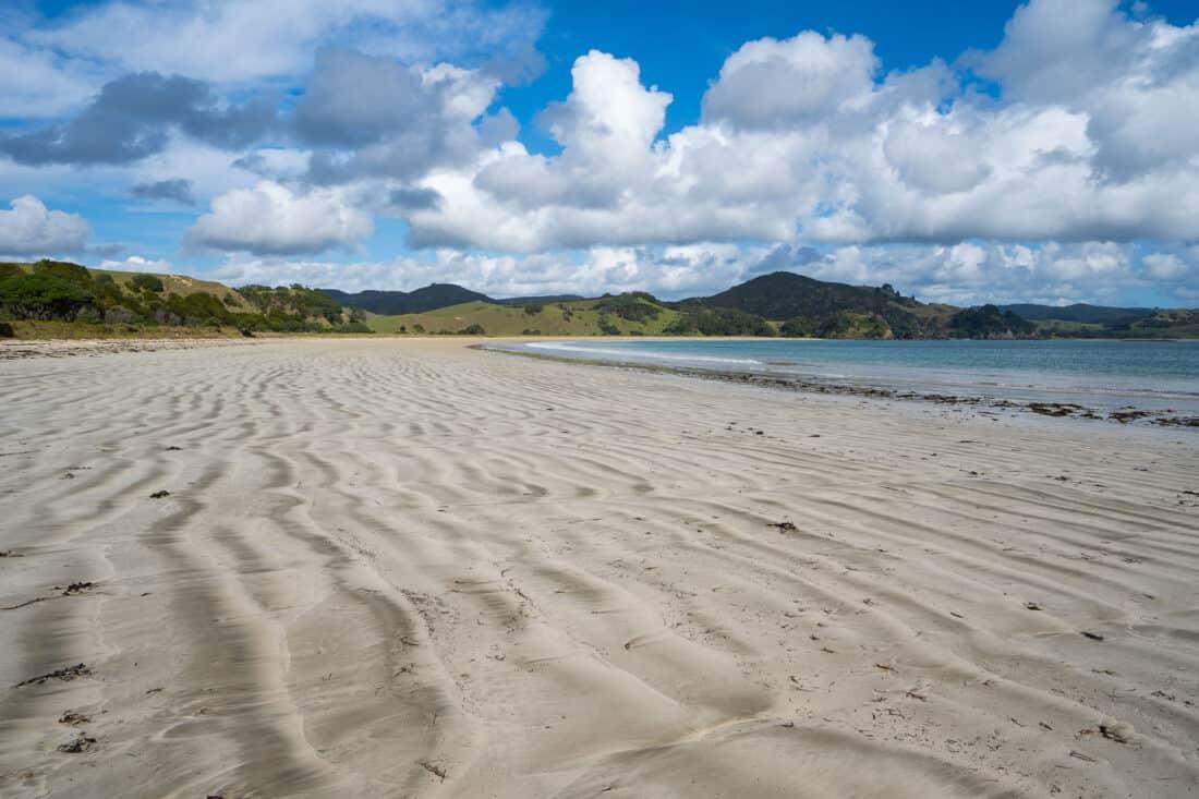 Mimiwhangata Beach in Mimiwhangata Coastal Park, Northland NZ
