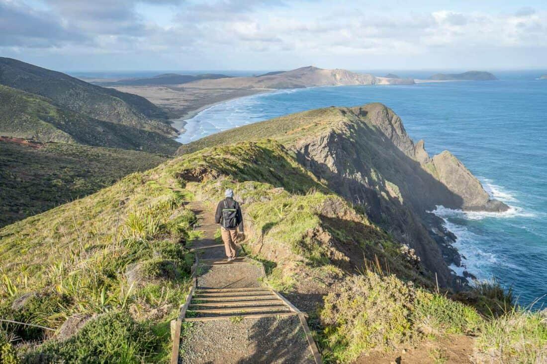 Hiking the Te Paki Coastal Track from Cape Reinga lighthouse to Te Werahi Beach