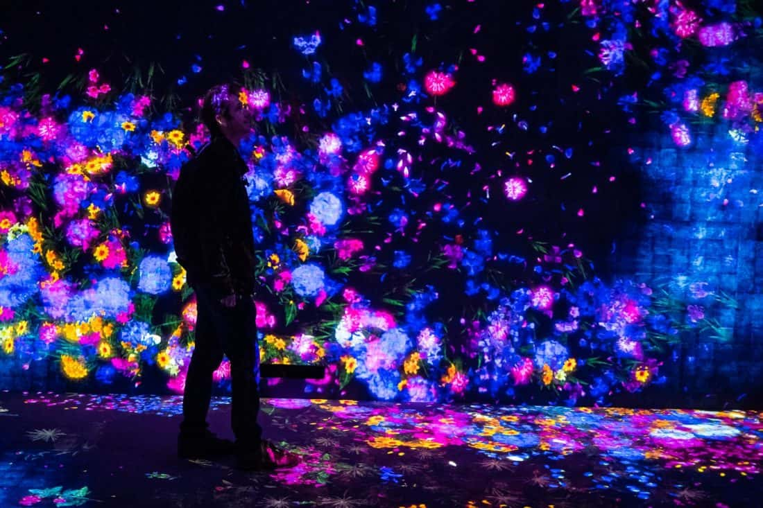 TeamLab Borderless digital arts museum in Tokyo