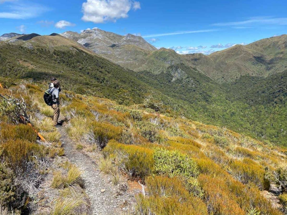 Hiking to Mt Arthur Hut in Kahurangi National Park on the Flora Hut to Arthur hut loop