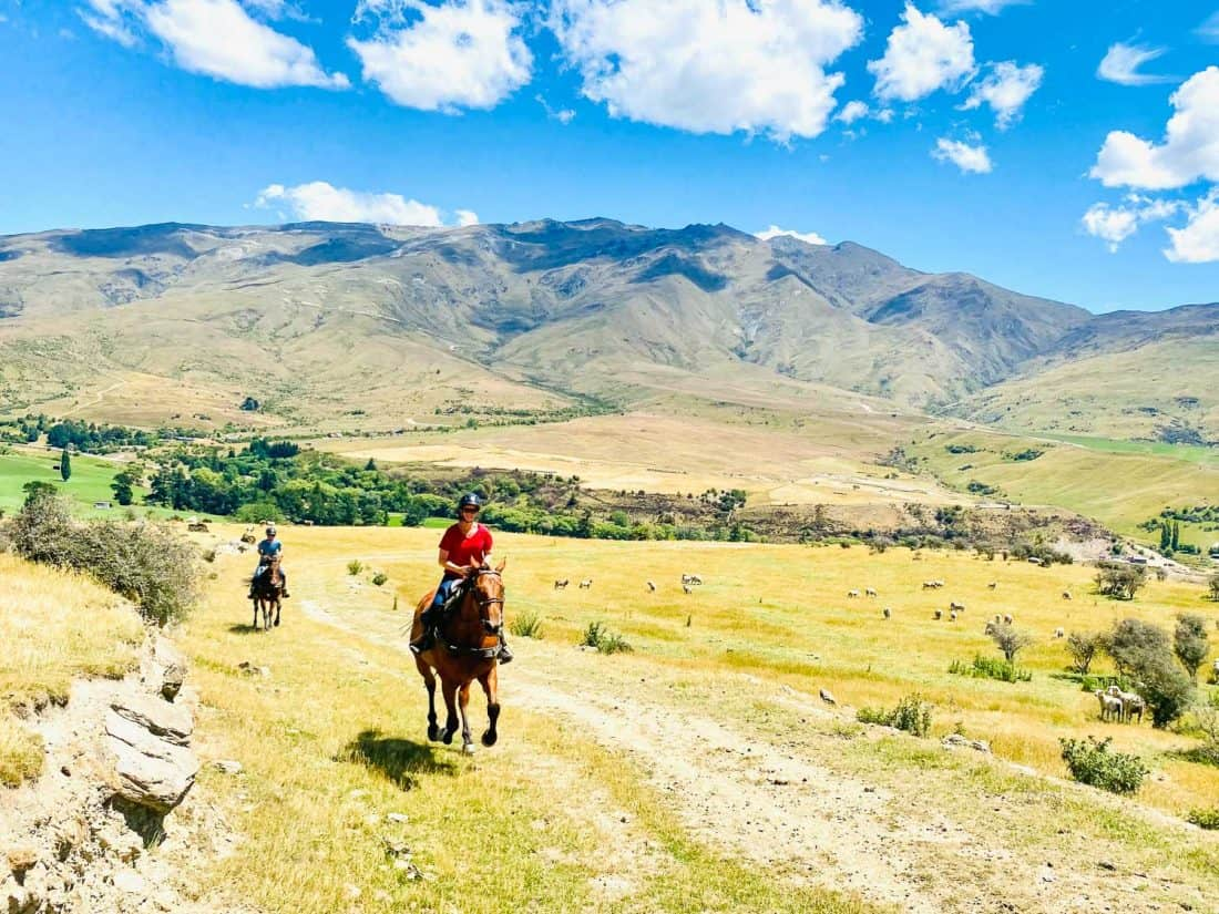 Erin and Simon cantering on a horse ride with The Cardrona