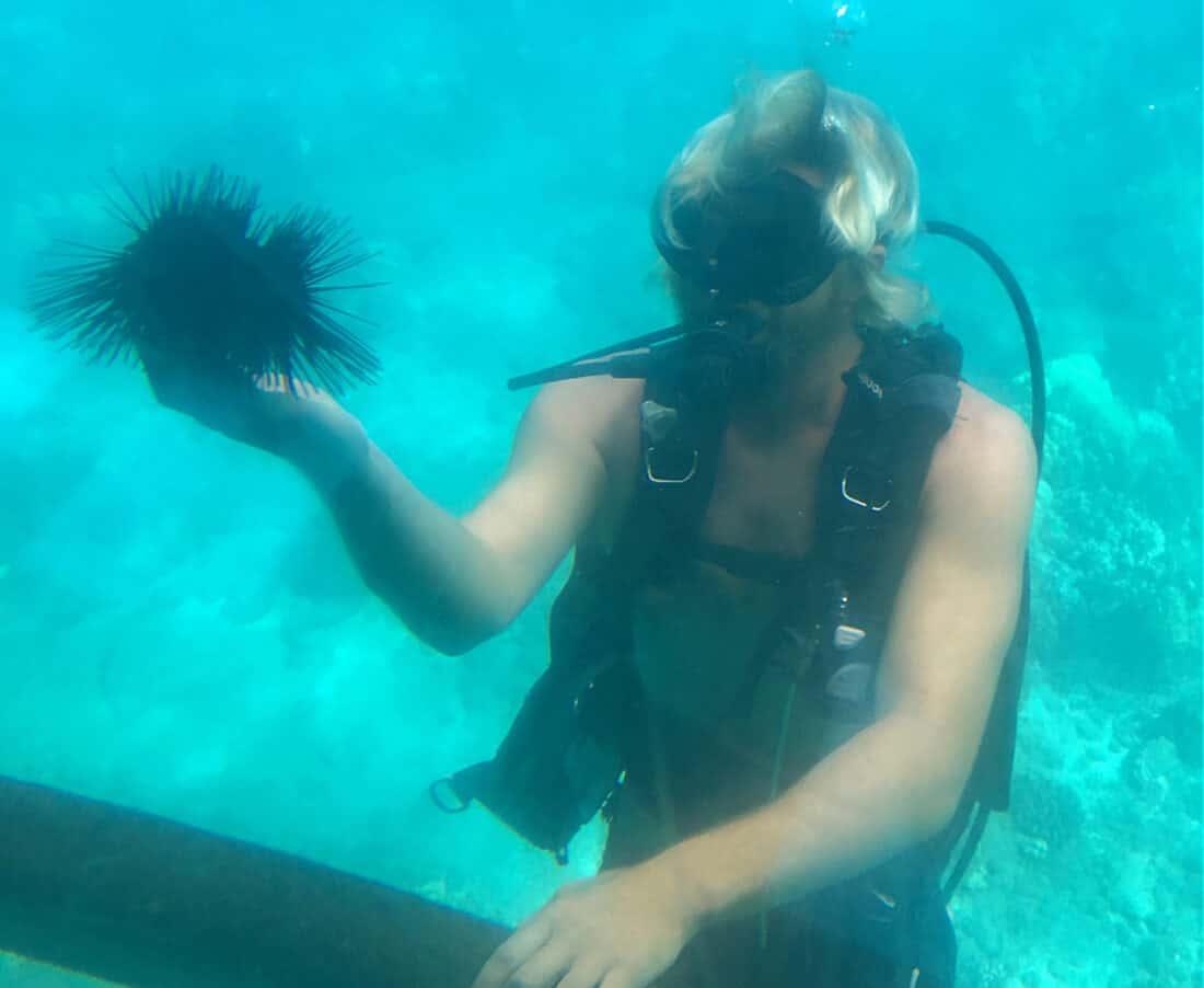 Lahaina Submarine Tour, Maui
